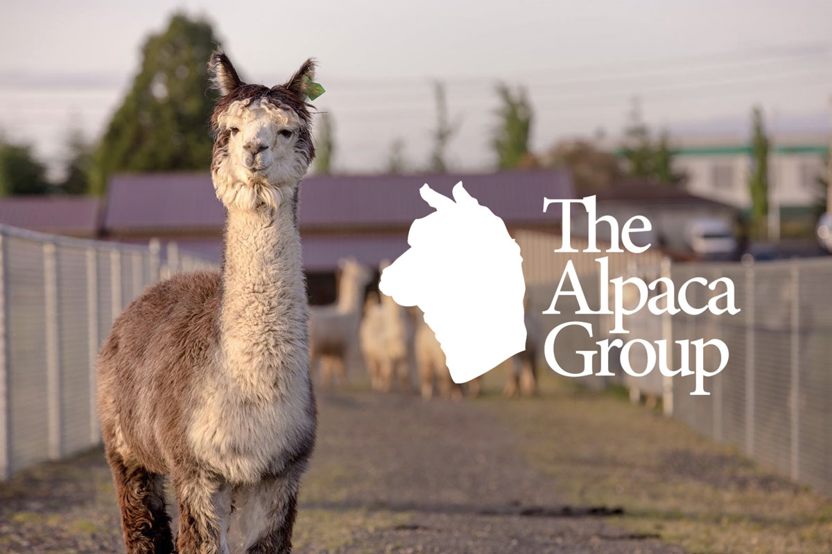 The Alpaca Group Logo