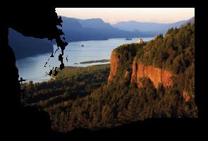 SEO Company Vancouver WA | Webfor